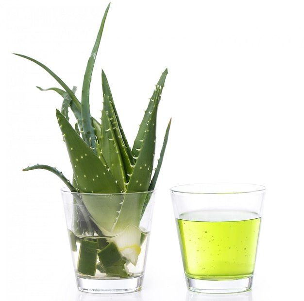Aloevera sur la table
