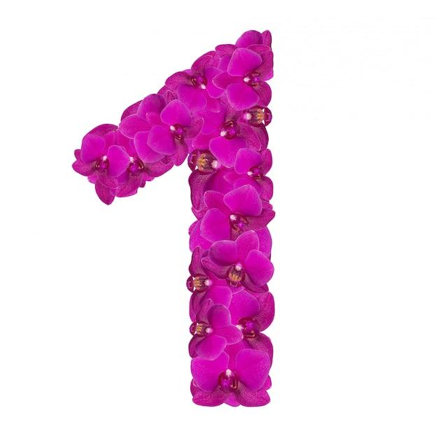 Alphabet numéro un de fleurs d'orchidées isolé sur blanc