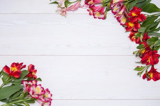 Alstroemeria fleurs fond avec zephir blanc sur un fond en bois blanc.