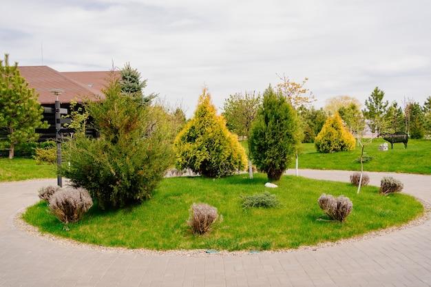 Aménagement paysager. autour de la pelouse. avec arbres et arbustes. plantation d'arbres et d'arbustes.