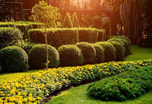 Aménagement paysager de luxe du jardin tropical. belle vue sur paysage tropical