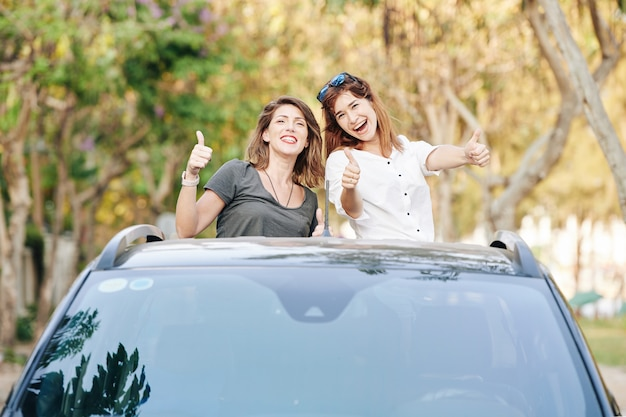 Amis à cheval dans le coffre de la voiture