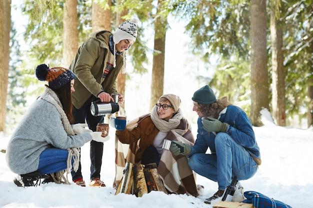 Amis de feu de camp dans la forêt d'hiver