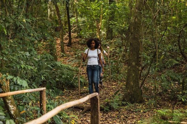 Des amis de la génération y en descendant ensemble sur un sentier forestier.