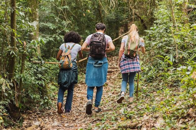 Amis avec des sacs à dos marchant dans la jungle