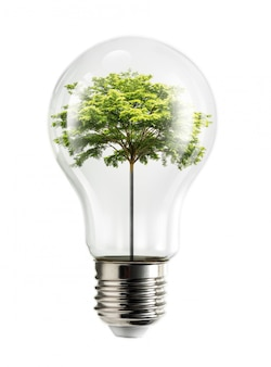 Ampoule d'arbre interne
