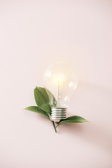 Ampoule de concept d'énergie verte eco, ampoule laisse sur fond rose.