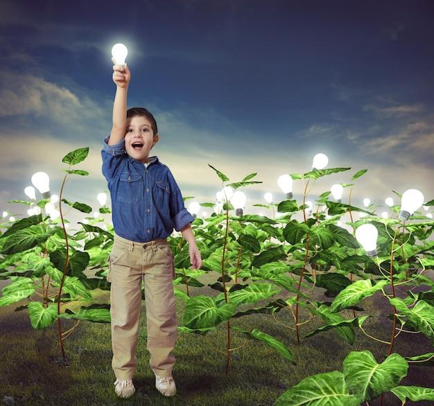 Ampoule dans un champ d'idées