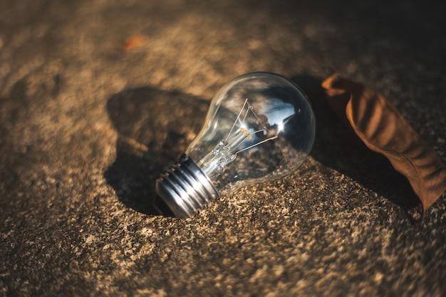 Ampoule fantazy, ampoule à la main, ampoule et bokeh