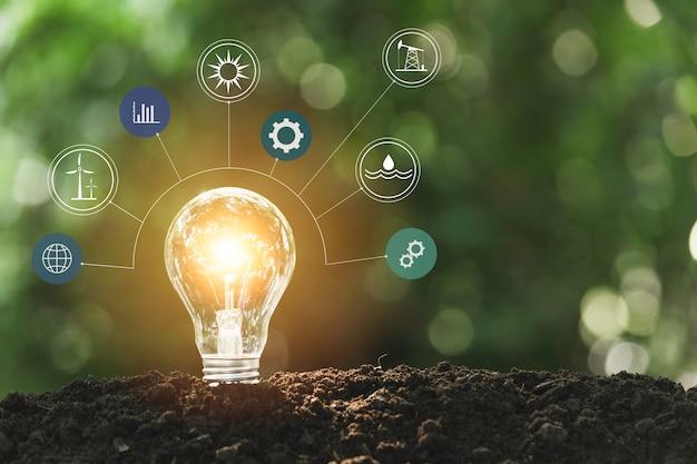 Ampoules avec un brillant. concept de technologie et de créativité avec des ampoules.