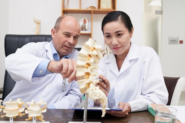 Analyse de la structure de la colonne vertébrale