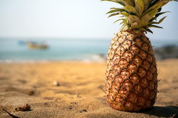 Ananas close up allongé sur une plage de sable contre un ciel bleu clair.