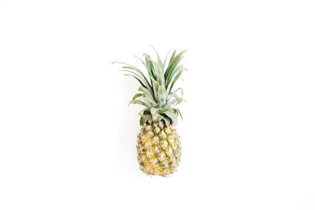 Ananas sur fond blanc.