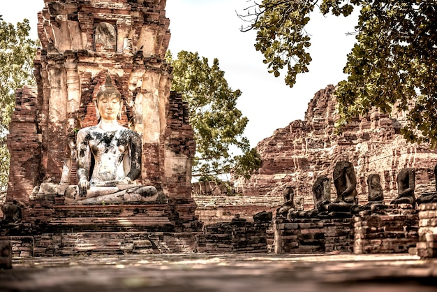L'ancien bouddha. enchaîné au wat mahathat, phra nakhon si ayutthaya thaïlande.