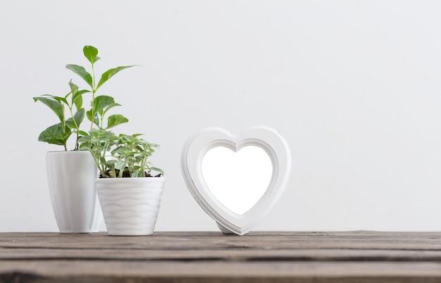 Ancien cadre en bois blanc avec des plantes sur table en bois