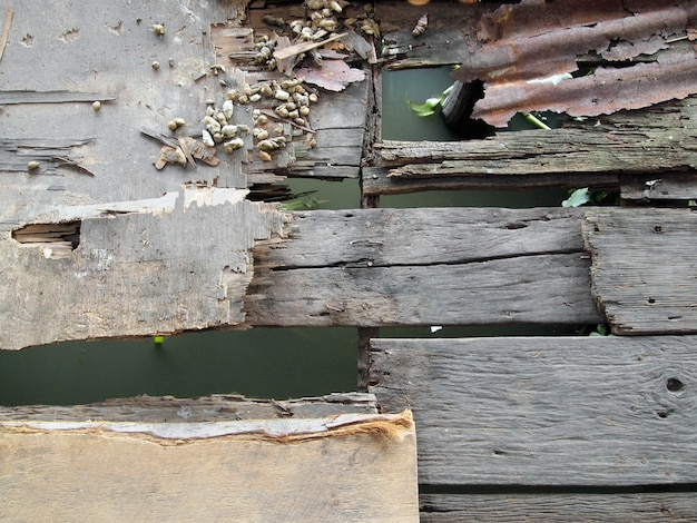 Ancien sentier en bois