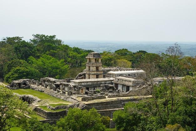 Ancienne cité maya cachée dans la jungle sauvage
