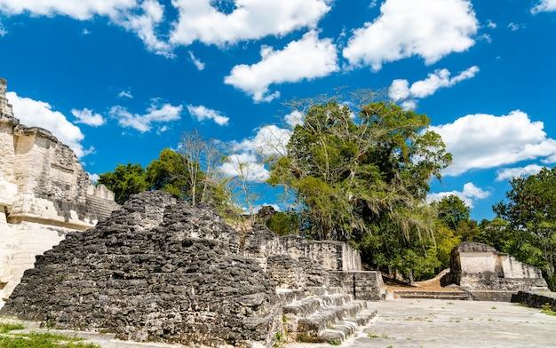 Anciennes ruines mayas de tikal. patrimoine mondial de l'unesco au guatemala