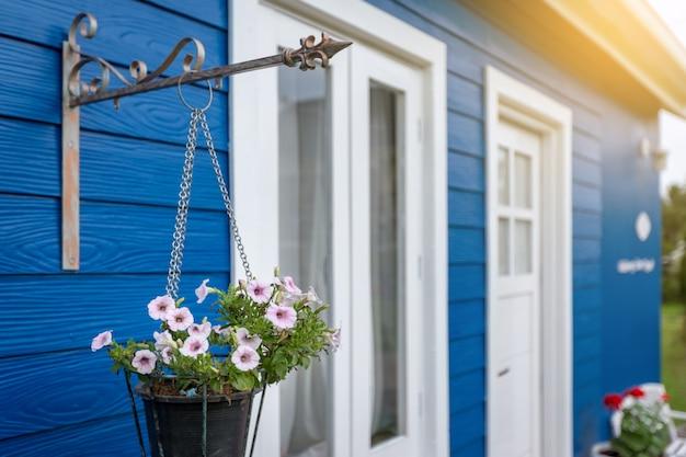 Anémone fleurs blanches et roses dans un pot de fleurs suspendues devant une maison bleue