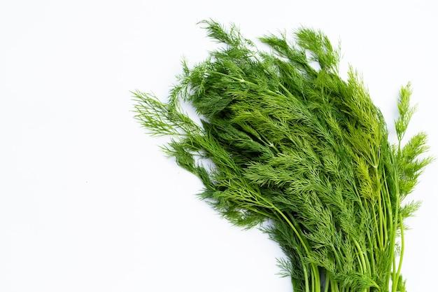 Aneth vert frais sur une surface blanche