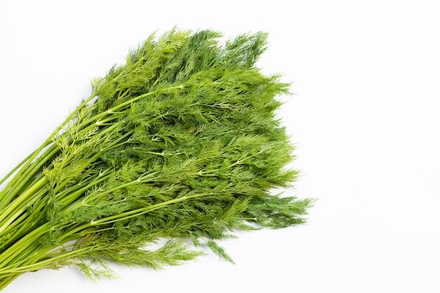 Aneth vert frais.
