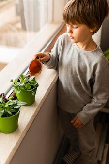 Angle élevé du petit enfant arrosant les plantes par la fenêtre