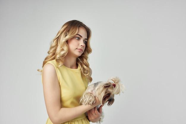 Animal de compagnie blonde posant fond isolé de mode. photo de haute qualité