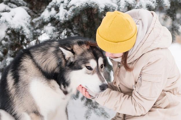 Animal de compagnie femme avec amour malamute d'alaska dans la forêt d'hiver. fermer.