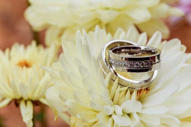 Anneaux de mariage dahlias blancs aiment la saint-valentin