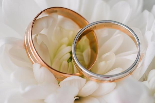 Anneaux de mariage gros plan sur le fond blanc des pétales
