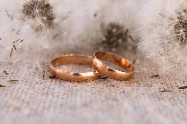 Anneaux de mariage sur les pissenlits de fond
