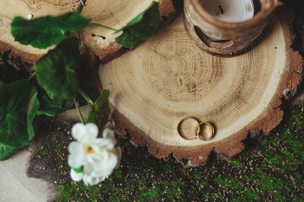 Anneaux d'or de mariage sur la souche dans une herbe verte
