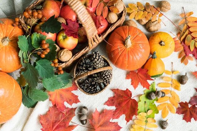 Aperçu du panier avec des pommes mûres entourées de citrouilles, de feuilles d'automne, de glands, de noix et de cônes de sapin
