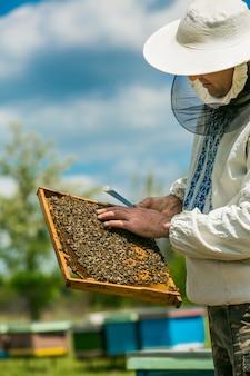 Apiculteur inspectant le cadre avec un nid d'abeilles plein d'abeilles. apiculteur au travail. abeilles sur nids d'abeille.