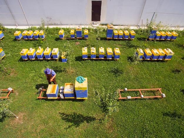 L'apiculteur inspecte les ruches du rucher industriel