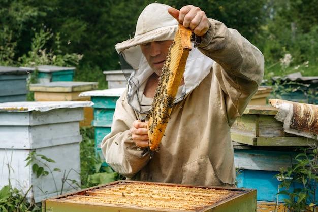 L'apiculteur travaille avec les abeilles dans le rucher