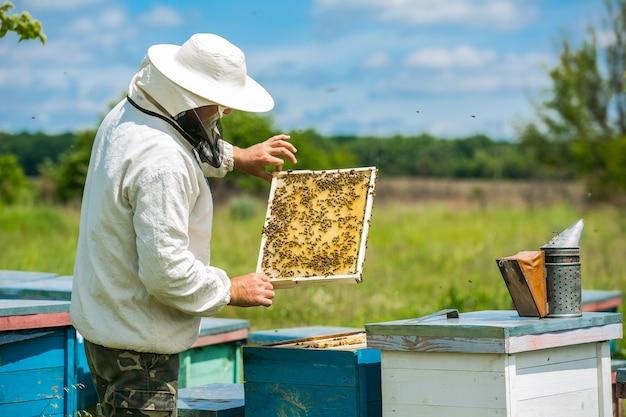 L'apiculteur travaille avec des abeilles et des ruches sur le rucher. apiculteur sur rucher.