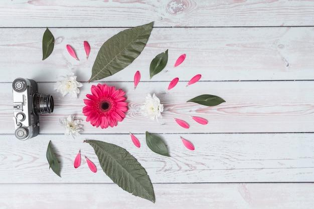 Appareil photo rétro près de l'ensemble des feuilles et des fleurs fraîches