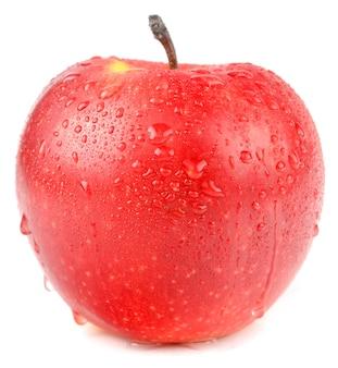 Apple sur fond blanc