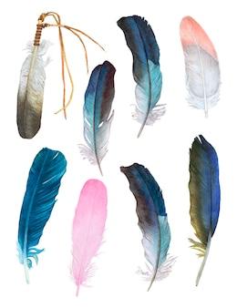 Aquarelle de belles plumes sur blanc.