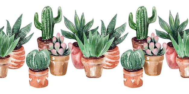 Aquarelle border collection de cactus en pots