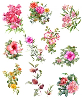 Aquarelle de feuilles et de fleurs