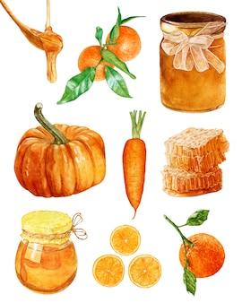 Aquarelle miel, citrouille, carotte, oranges