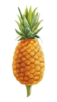 Aquarelle peinte à la main ananas jaune isolé sur blanc