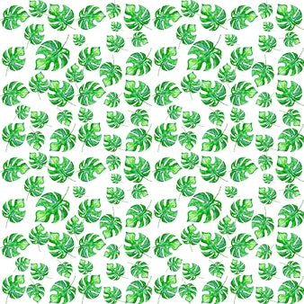 Aquarelle peinte motif de feuilles tropicales monstera
