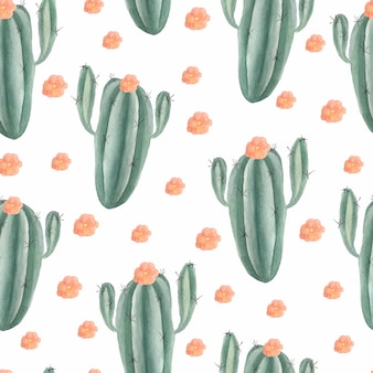Aquarelle transparente motif de cactus avec fleur rose et plantes succulentes