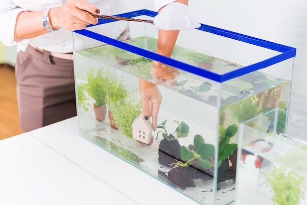 Aquarium pour animal de compagnie et passe-temps à la maison. décorer et concevoir un aquarium.