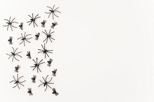 Araignées noires d'halloween