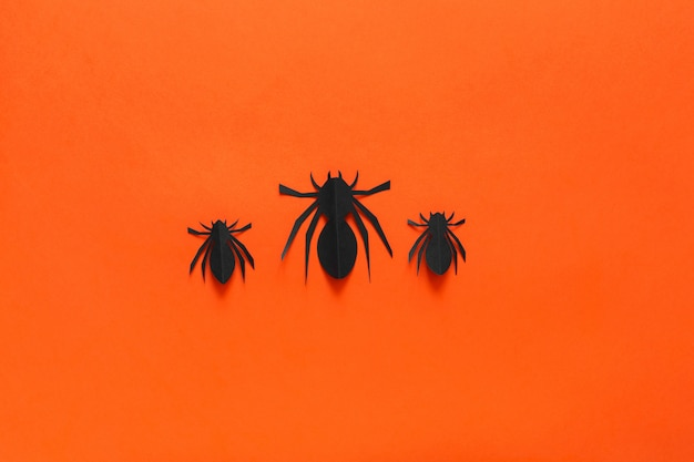 Araignées de papier sur un fond orange