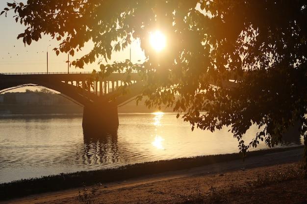 Un arbre en arrière-plan d'un pont. l'arbre est illuminé par le soleil au coucher du soleil. longue portée floue. notion d'automne.
